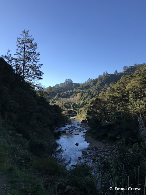 Things to do in New Zealand Karangahake Gorge Adventures of a London Kiwi