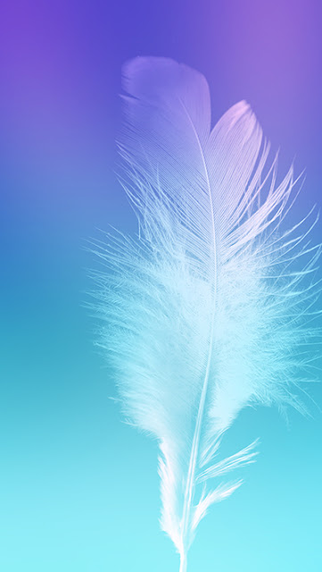 Feather  Wallpapers Galaxy Note 7