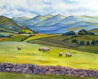 Watercolor and ink painting of sheep grazing in Cumbria, England