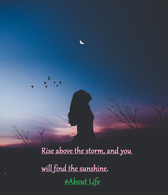 Rise above the storm, and you will find the sunshine. - Mario Fernandez