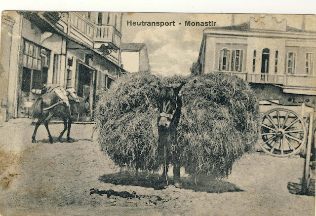 """Part of Bitola on postcard issued under the title """"World War 1914/16"""""""