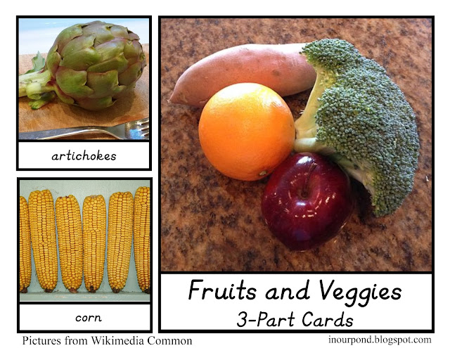 FREE 3-Part Cards for Safari Ltd Fruits and Veggies Toob
