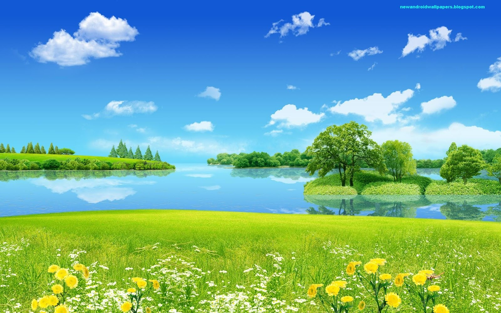 HD Natural Scenery Wallpaper Creative Summer Dreamland the Sky and the Sea Are Quite Blue Smiling Flowers Everything is Turning Good