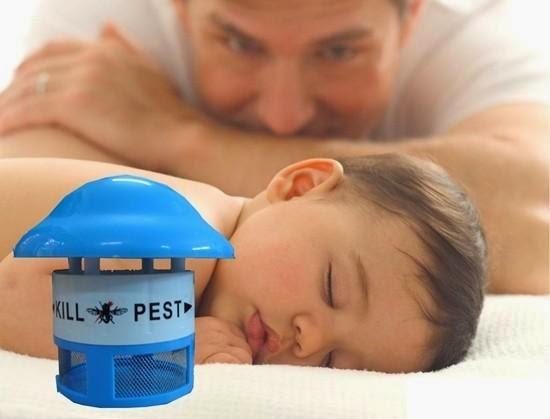2 cách làm bẫy bắt muỗi đơn giản mà hiệu quả