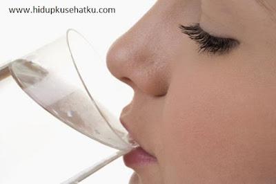 www.hidupkusehatku.com