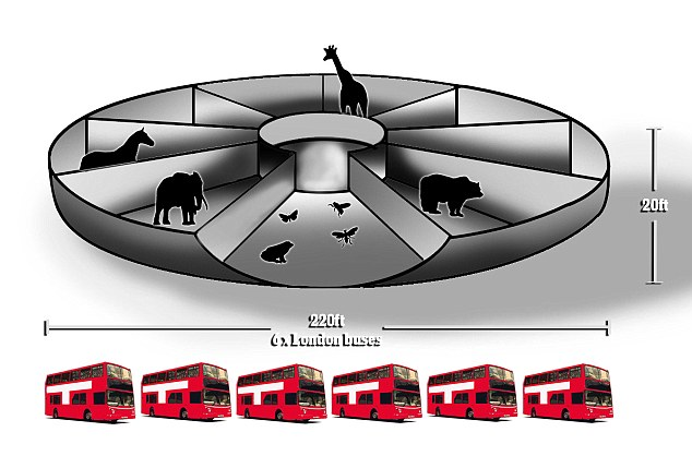 Noah's Ark Shape