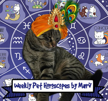 Weekly Pet Horoscope