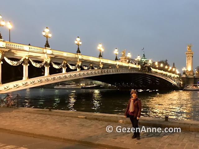 Paris Alexxander III köprüsü ve Seine nehri