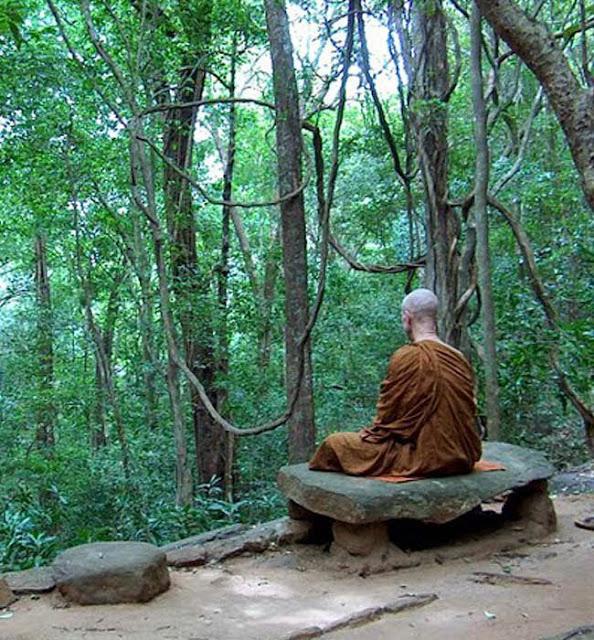 Đạo Phật Nguyên Thủy - Tìm Hiểu Kinh Phật - TRUNG BỘ KINH - Tiểu kinh dụ dấu chân voi