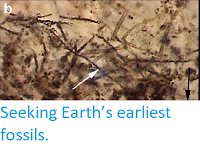 http://sciencythoughts.blogspot.co.uk/2015/04/seeking-earths-earliest-fossils.html