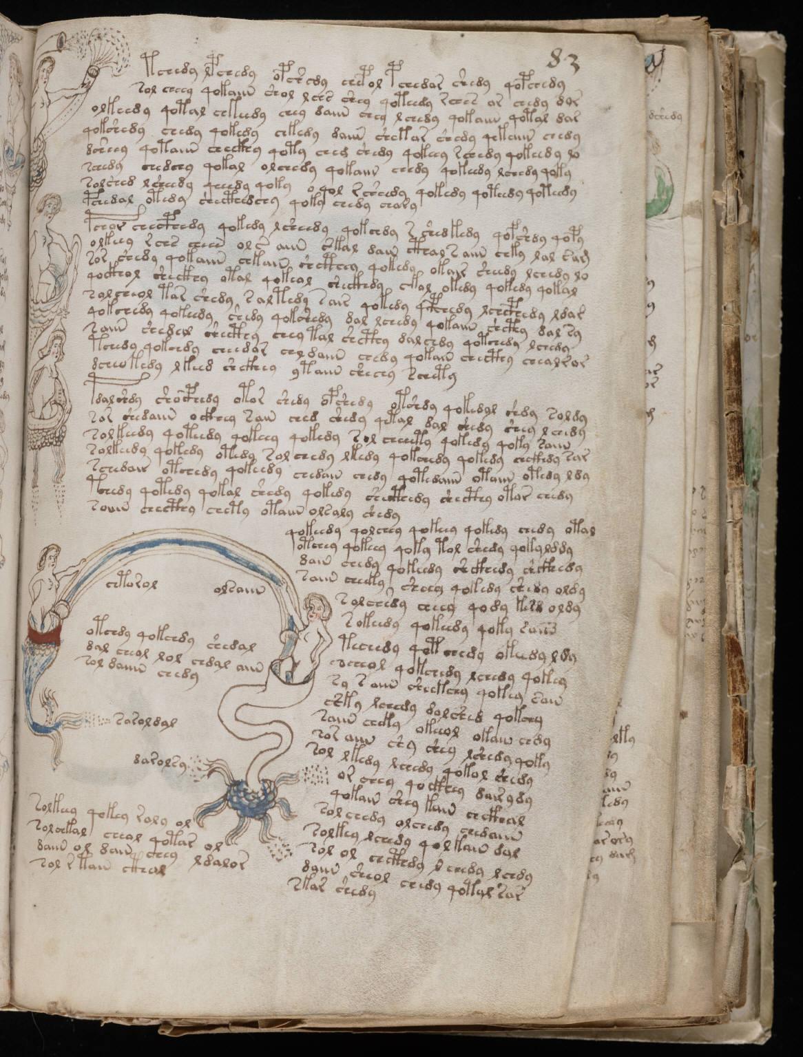 manuscrito149