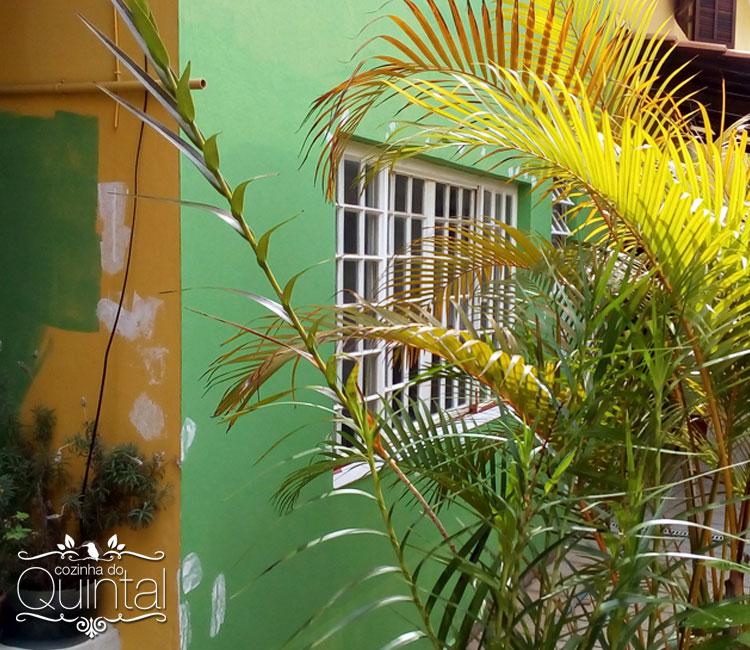 Amo minha casa, independente da cor. Mas amo verde =)