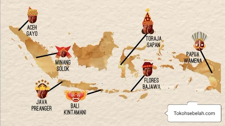 7 Daerah Penghasil Kopi Terbaik Di Indonesia