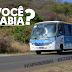 Ônibus em Noronha pode ser uma ótima opção
