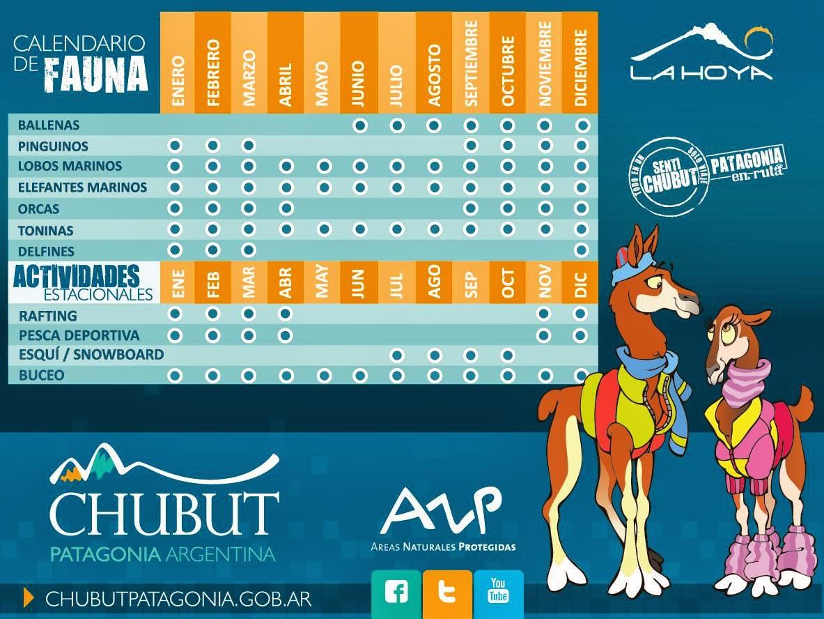 Calendario de Fauna de Chubut y actividades estacionales