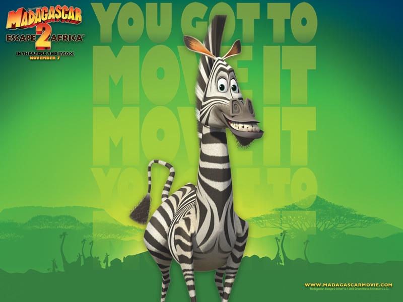 madagascar zebra - photo #16