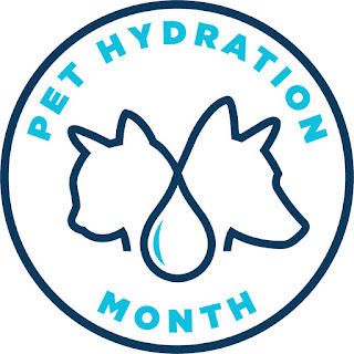 July is Pet Hydration Month.