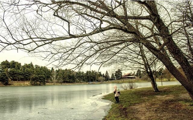 Göl kenarı