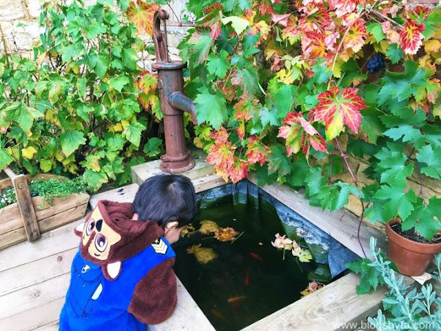 The Bull & Swan kitchen garden in Stamford