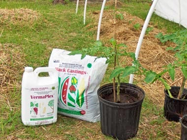 organic fertilizer for seed starting