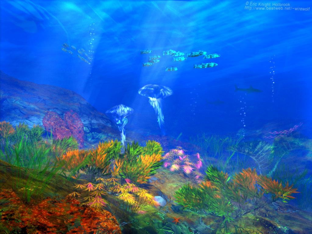 3d Scanner Image: 3d Ocean
