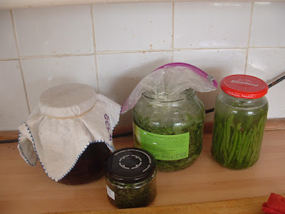 A collection of different jars filled with various preserves