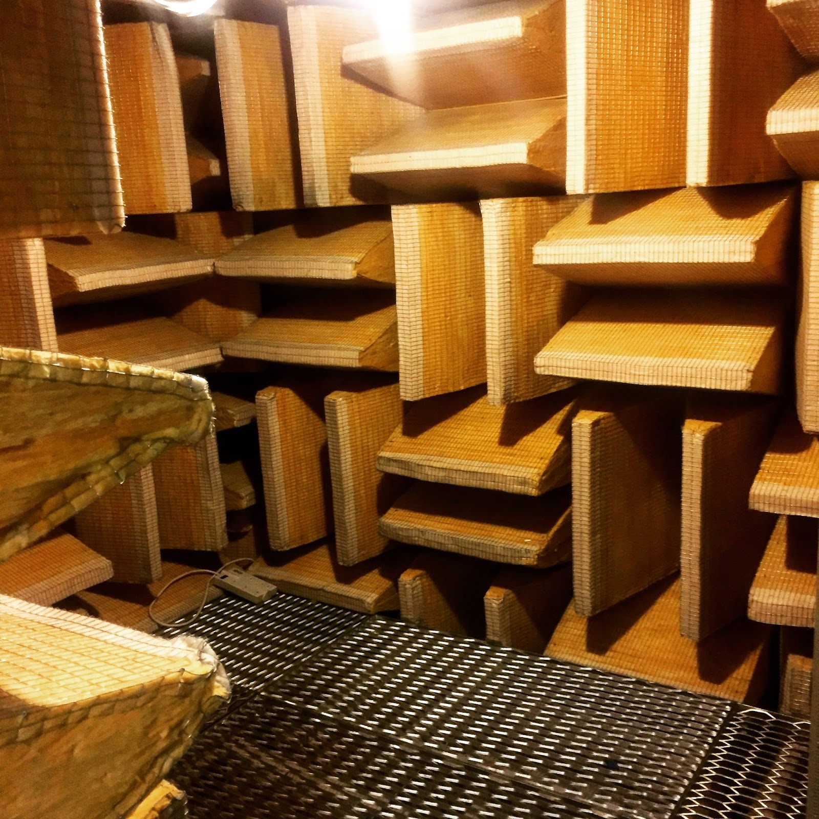 Sense & the City: SOUND: The anechoic chamber at the Cooper