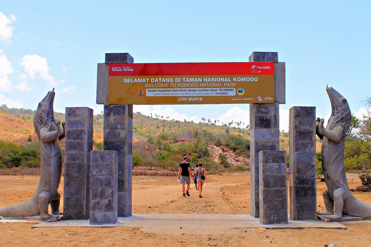 Komodo Dragon Climbing Gate