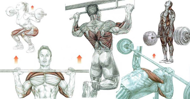 Most Types of Supersets For Super Size!
