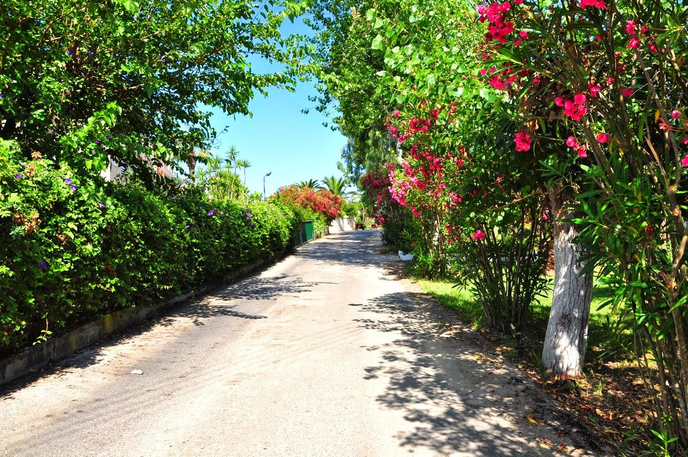 grecka-wyspa_Corfu