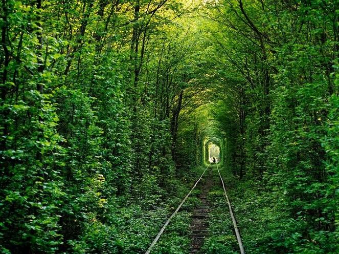 Tunnel of Love, Terowongan Cinta di Ukraina