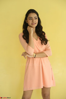 Rukshar Mir in a Peachy Deep Neck Short Dress 117.JPG