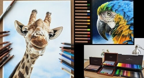 00-Jae-Kyung-Domestic-and-Wild-Animals-Pencil-Drawings-www-designstack-co