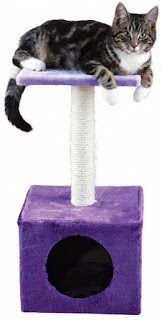 arbre chat trixie petit violet