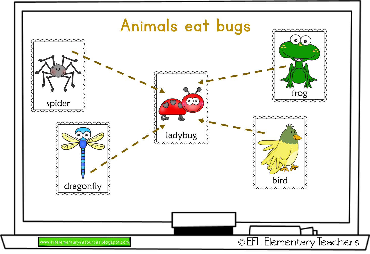 Efl Elementary Teachers Insects Unit For Elementary Esl