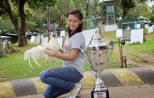 Cara Memilih Ayam Bangkok