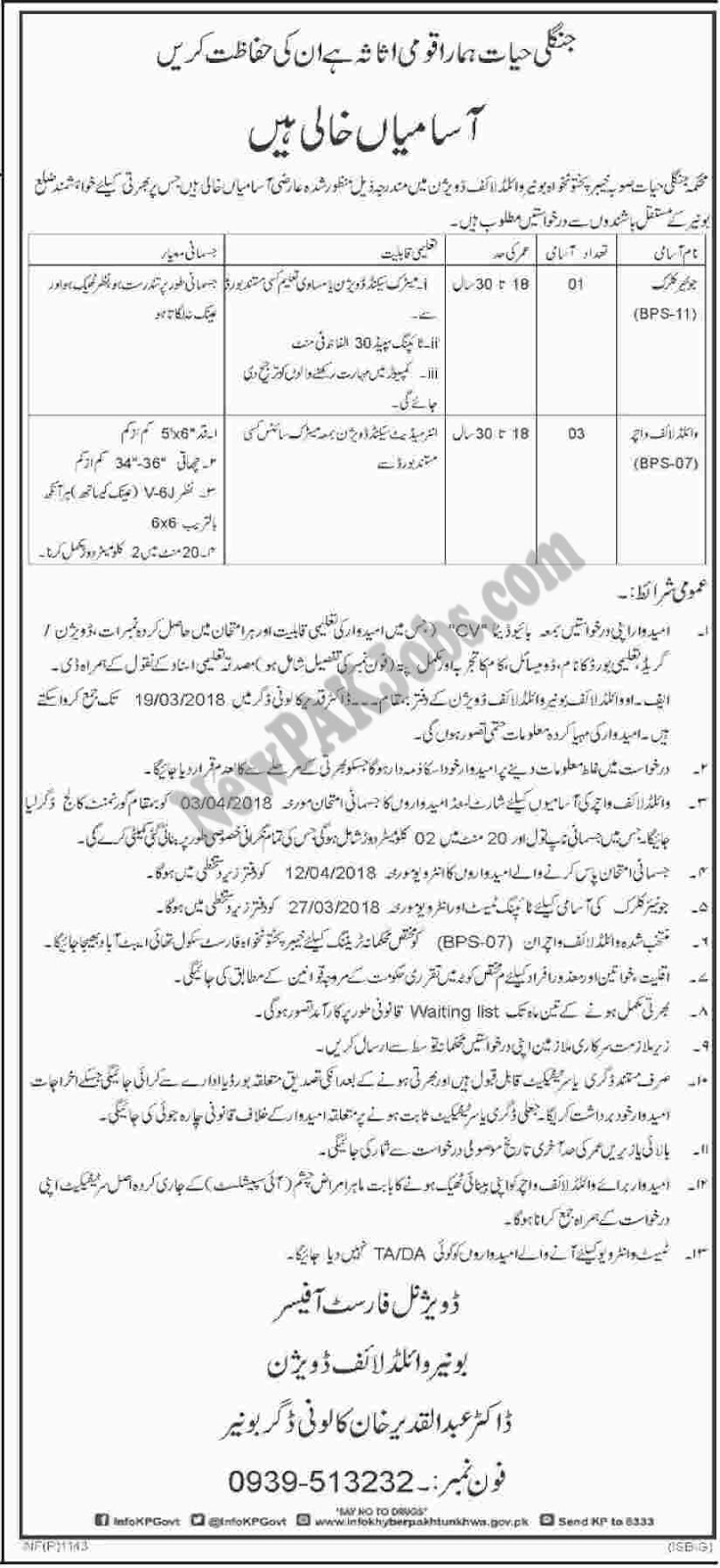 Junior Clerk, Wildlife Voucher Jobs in Wildlife Division Buner