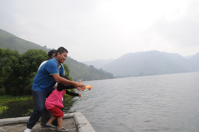 ikan mas danau toba