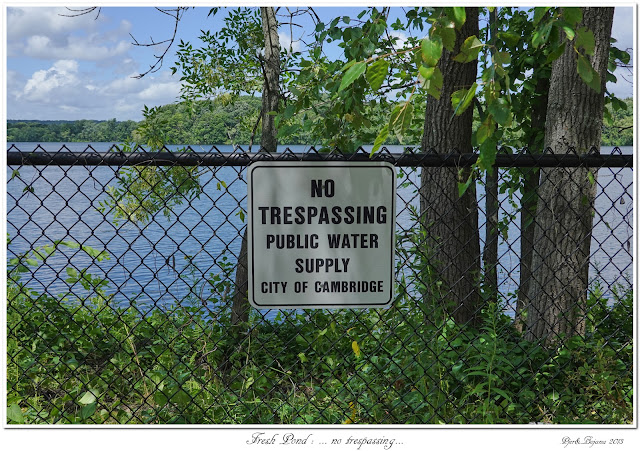 Fresh Pond: ... no trespassing...