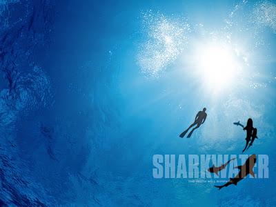 Scharkwater - ein Film über Haie