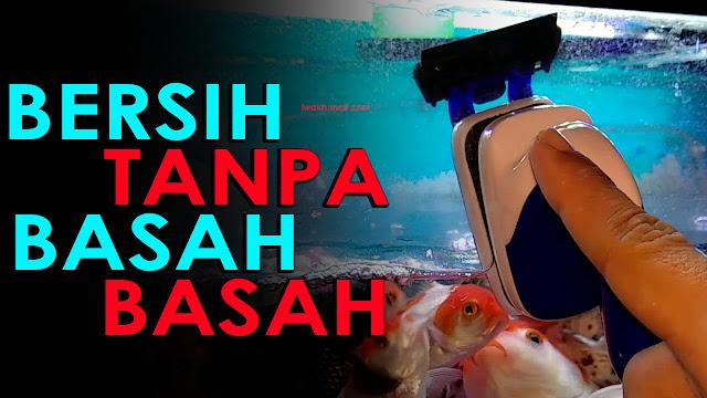 Bisakah Membersihkan Lumut Kaca Aquarium Tanpa Basah-Basahan Review Sobo Sb-06 Sikat Magnetic