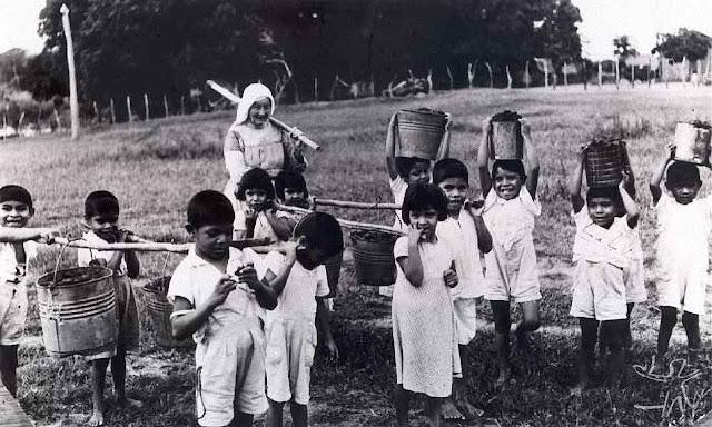 Religiosa na Missão Anchieta entre os indígenas da Amazônia, modelo da evangelização e de civilização  que o Papa Francisco não quereria, segundo D.Claudio Hummes.