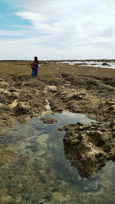 Garut Selatan dan Eksotisme Pantai Santolo Yang Sedang Surut
