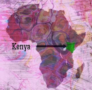 Kenya is in Eastern Africa, bordering the Indian Ocean, between Somalia and Tanzania.