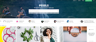Pexels -Free Stock Photos