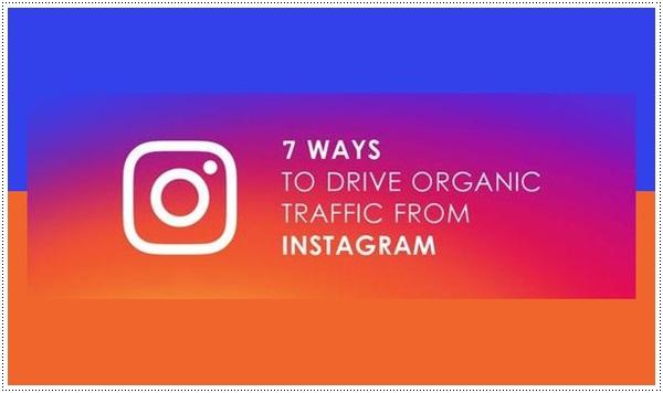 7-Ways-to-Drive-Organic-Website-Traffic-from-Instagram-Blogiapa