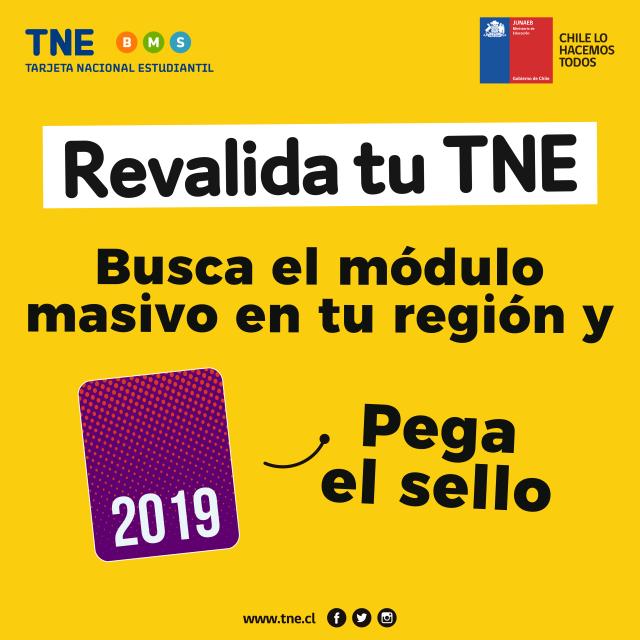 Estudiante: revalida tu TNE antes del 31 de mayo