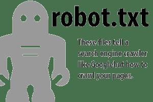 Robot TXT Google Webmaster