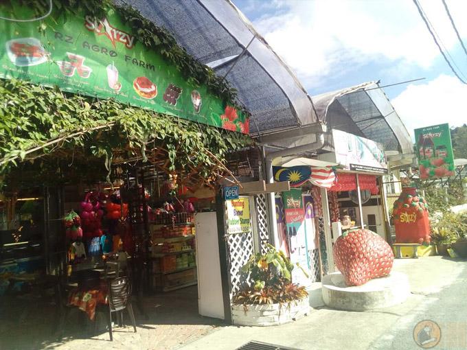 Kedai Cenderamata di Taman Sedia, Tanah Rata, Cameron Highlands