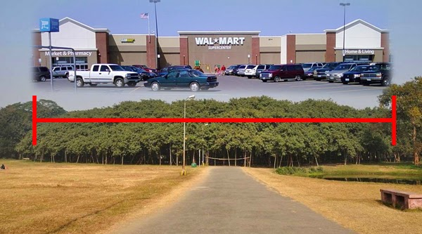 And that tree is about the size of a Walmart. - In India, There Is A Gigantic Tree That Is Bigger Than A Walmart Store.